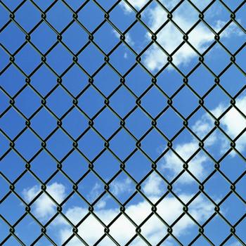 vidaXL Žičana ograda od čelika 0,8 x 15 m zelena