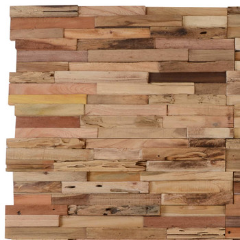 vidaXL Ploče za zidne obloge 10 kom 1,03 m² od reciklirane tikovine