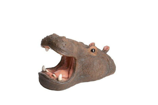 Floating Hippo Head