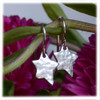"""Shine Brightly"" Star Earrings"
