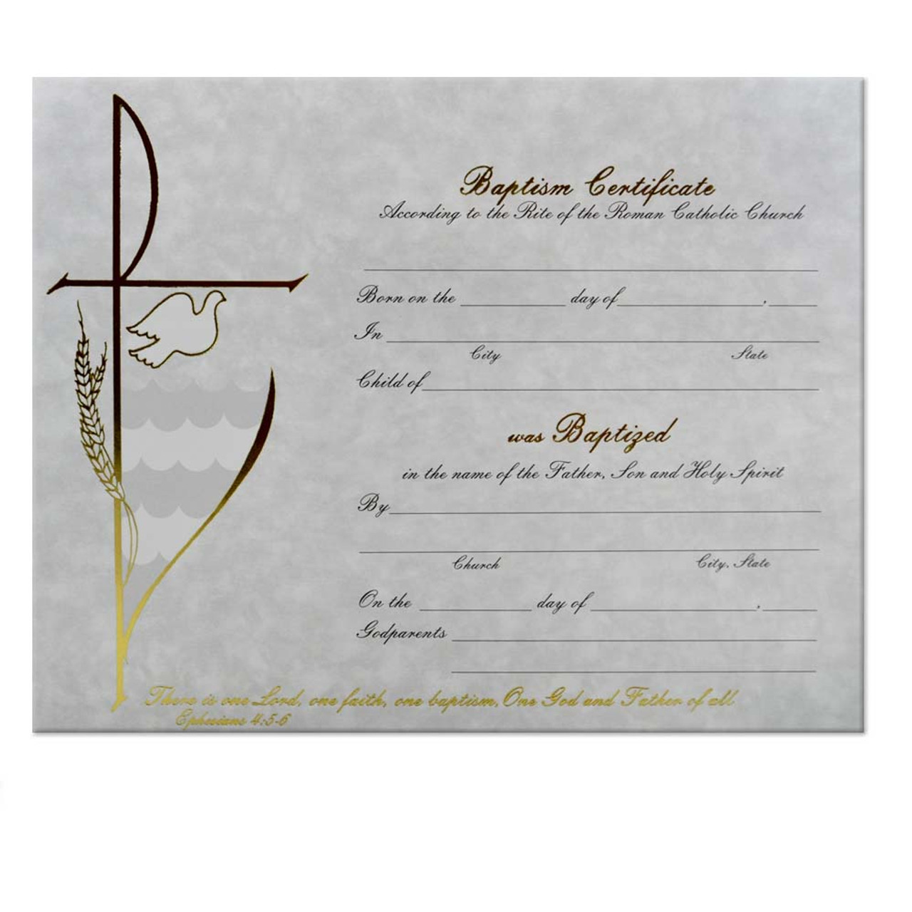 Baptism Certificate (Each)