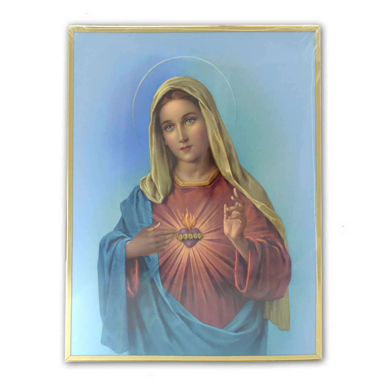 Immaculate Heart of Mary Framed Print 11x14