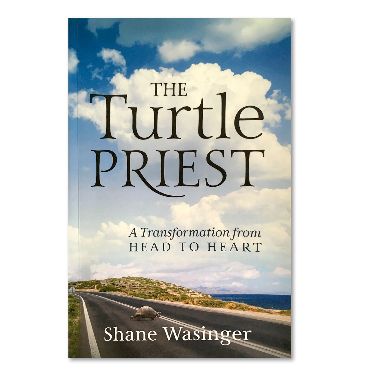 The Turtle Priest by Shane Wasinger