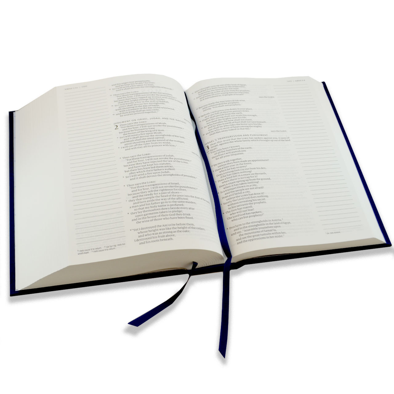 Inside pages of The Ave Catholic Notetaking Bible