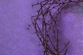 Crown of Thorns: Engaging Children During the Lent Season