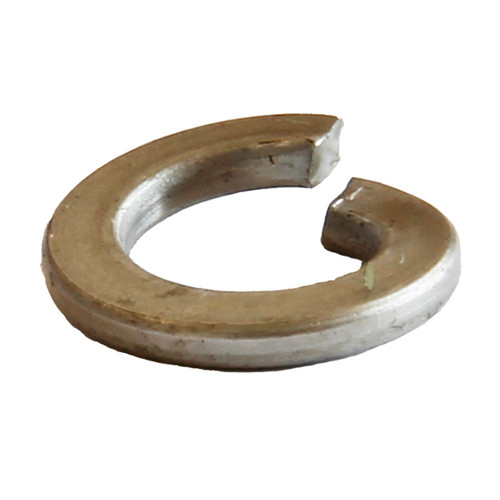 M12 Stainless Spring Washer
