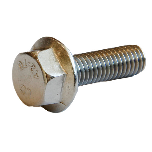 Flange bolt M6 x 20mm 10mmAF Stainless 304