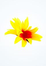 Horquilla de flores Multicolor imagen principal. [Multicolor]