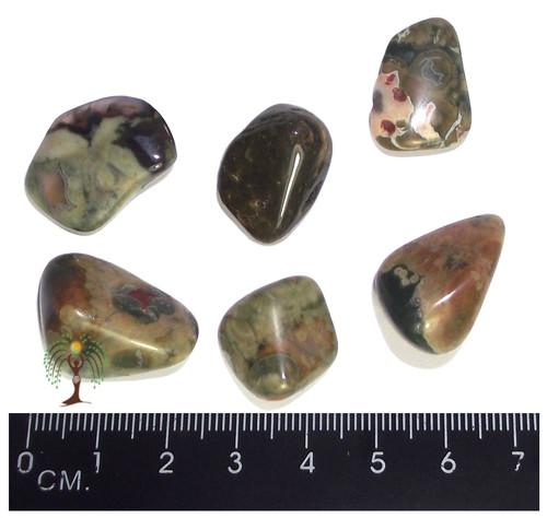 Rhyolite Tumbled Stone 15-25mm