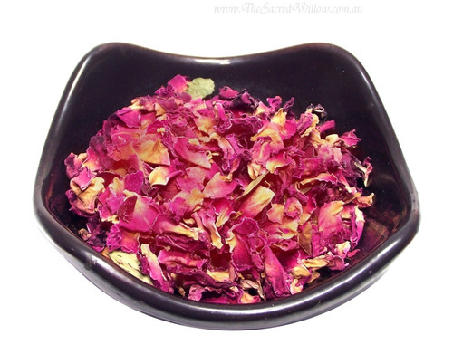 Rose Petals Red (Rosa Centifolla)