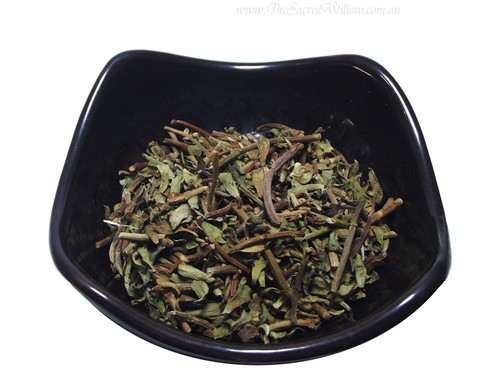 Organic Bacopa / Brami (Bacopa monniera)
