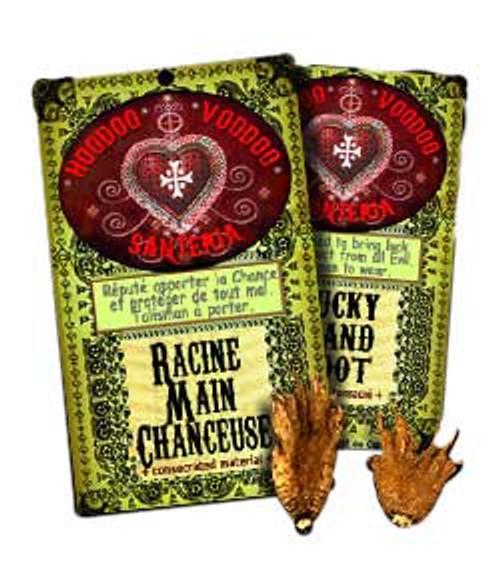 Lucky Hand Root Hoodoo Voodoo Santeria (1 root)