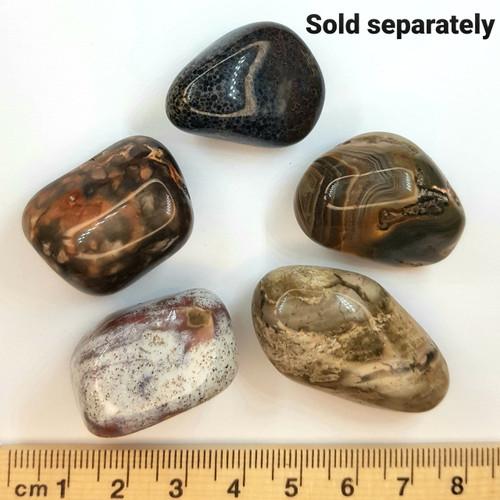 Agate Occos Large Tumbled Stone 2.5-3cm