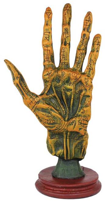 Alchemy Palmistry Corpse Hand Statue ~ 27cm