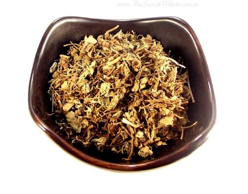 Gotu Kola / Pennywort (Centella asiatica)