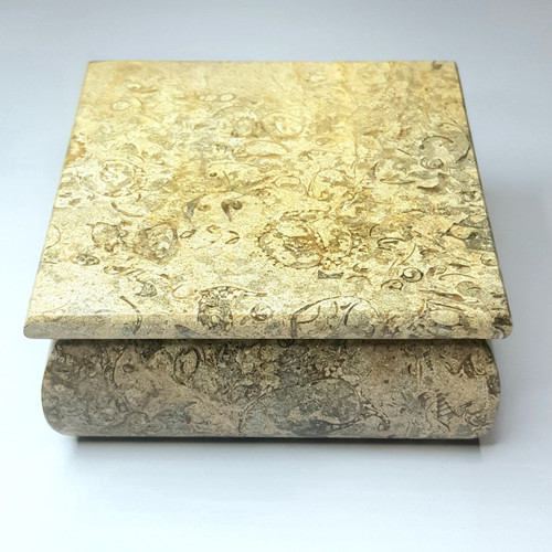Fossilised Coral Jewellery Box 12cm x 12cm