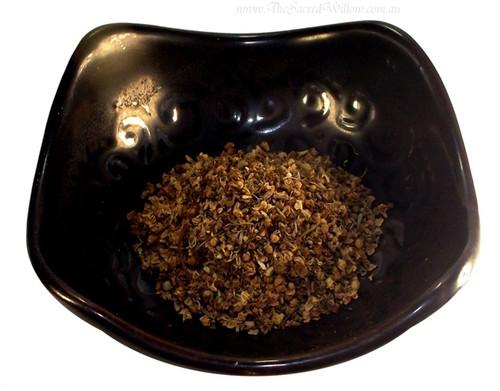 Elder Flower (Sambucus nigra) Dried Herb