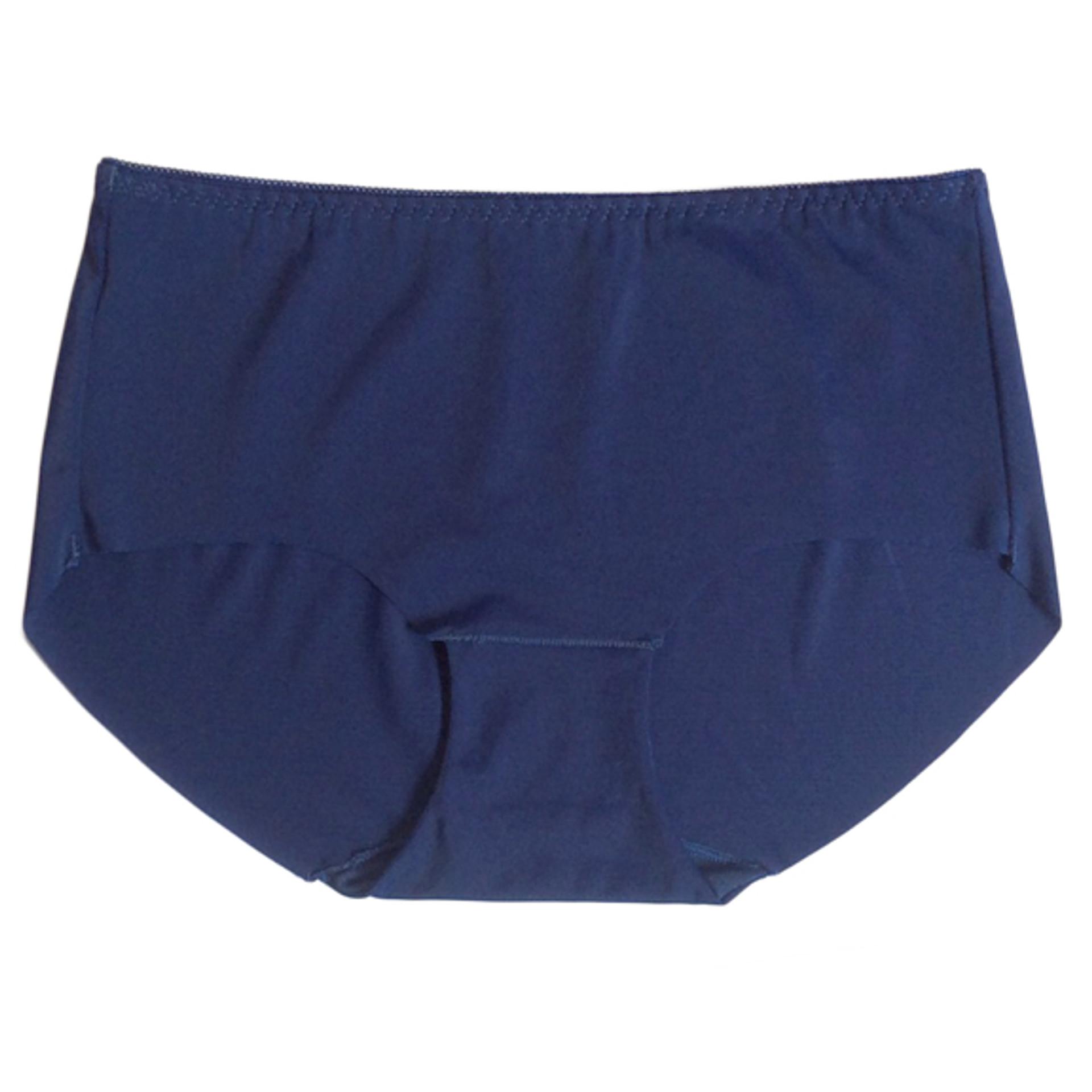 Seamless Plus Size Microfiber Panty