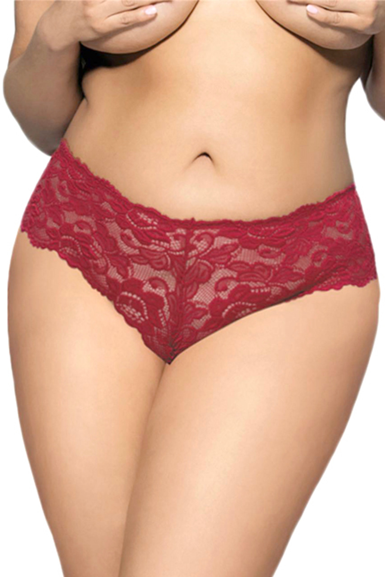 Sexy Red Floral Lace Cheeky Panty Plus Size