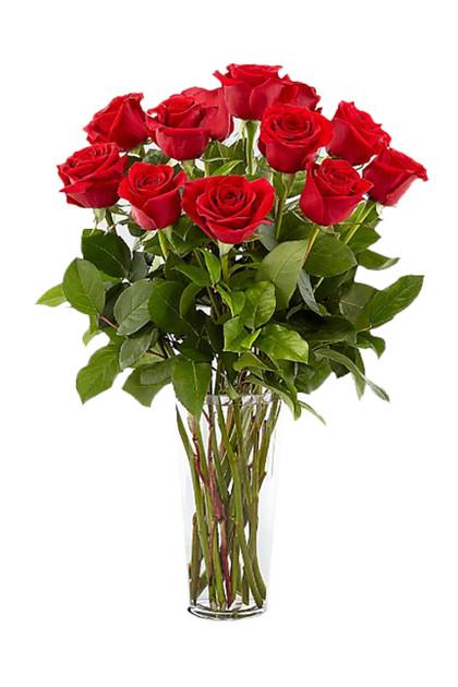 12 Red Roses 1 Dozen Bouquet Vintage Blooms™️