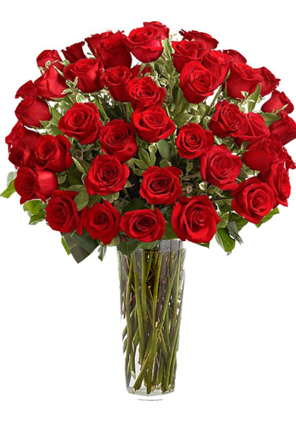 48 Red Roses 4 Dozens Bouquet Vintage Blooms by Lucky Doll®