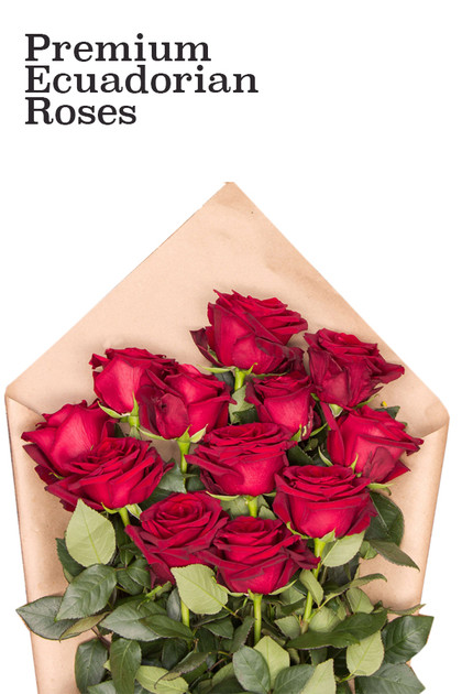 Premium Red Ecuadorian Roses Bouquet  Vintage Blooms by Lucky Doll®