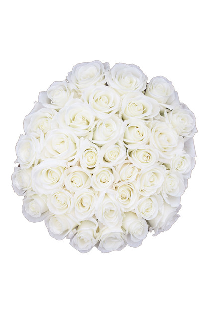 Premium White Ecuadorian Roses Bouquet  Vintage Blooms by Lucky Doll®