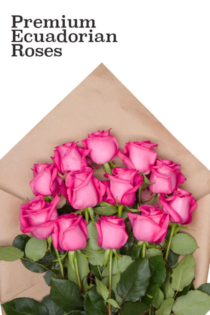 Premium Pink Ecuadorian Roses Bouquet  Vintage Blooms by Lucky Doll®