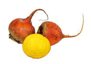 Beetroot Large - Orange - Per kg