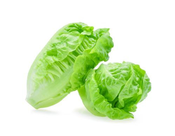 Lettuce  - Baby Cos Twin Pack Each