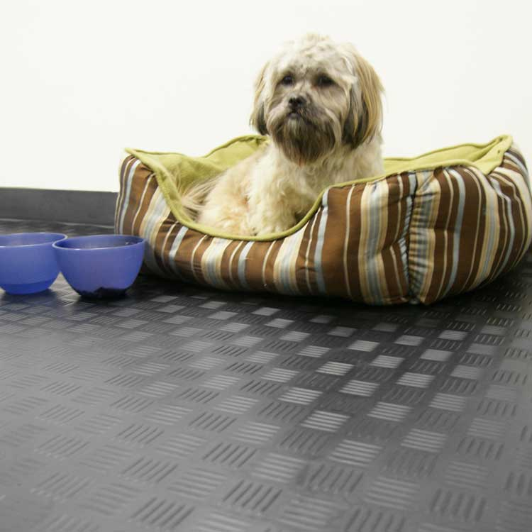 Diamond Grip flooring in a room with a dog resting in its dog bed