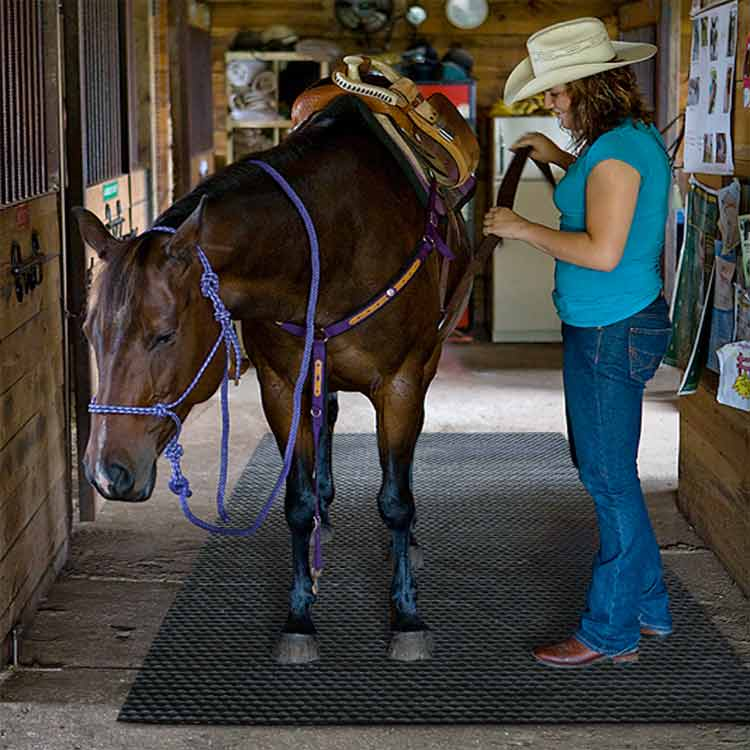 horse standing on black horse stall mat in a ranch