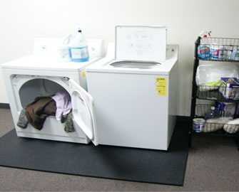 Shark Tooth rubber mat under open washing machine and loaded dryer