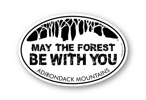 May the Forest Be With You Adirondack Mountains
