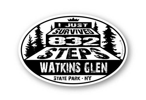 Wholesale I Survived Steps Sticker