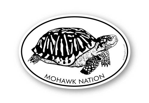 Wholesale Box Turtle Sticker