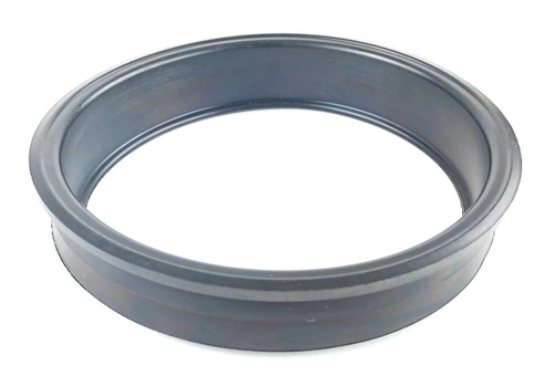 Fuel Pump Seal - NTC5859