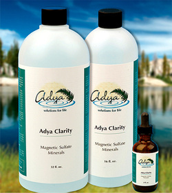 Adya Clarity Water Filtration and Minerals
