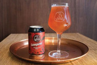 8 Wired Lamponi Raspberry Sour Ale⠀