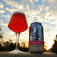 Otherside Catharina Sour Ale⠀