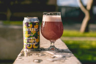 Hawkers Beneath the Trees We Gather Sour Ale