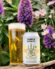 Temple Trident Tropical Sour