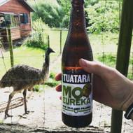 Tuatara Mot Eureka New Zealand Pilsner