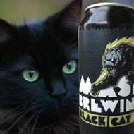 Mash Black Cat IPA⠀ ⠀