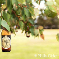 The Hills Cider The Virgin Apple Alcohol Free⠀