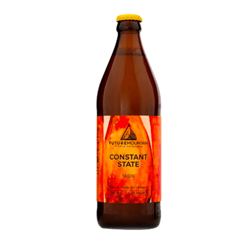 Future Mountain Constant State  Saison