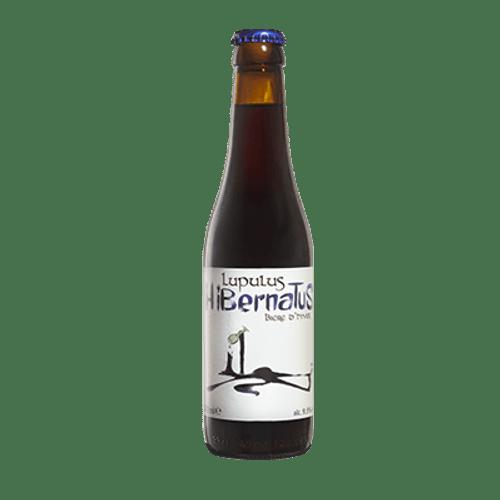 Lupulus Hibernatus Strong Ale