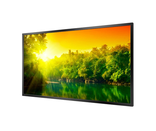 "42""  High Brightness Professional Monitor"