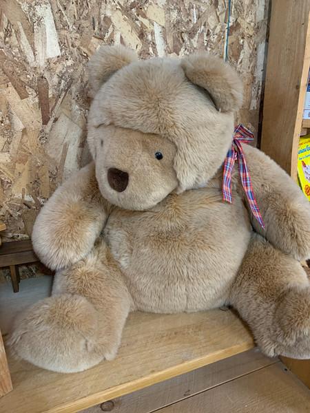 Gund Teddy Bear (1983, Retired)