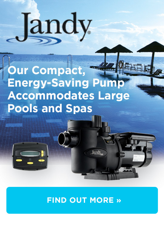 Jandy Speed Pump with Controller